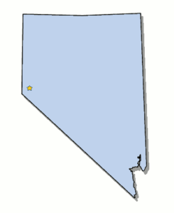 Nevada CE and CME Education